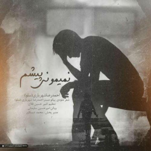 آهنگ جدید احمدرضا شهریاری بنام چرا برگشتی