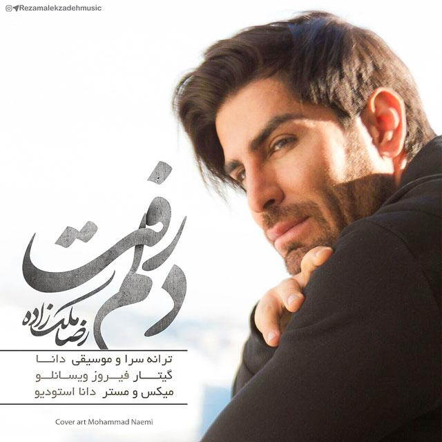 آهنگ جدید رضا ملک زاده بنام دلم رفت