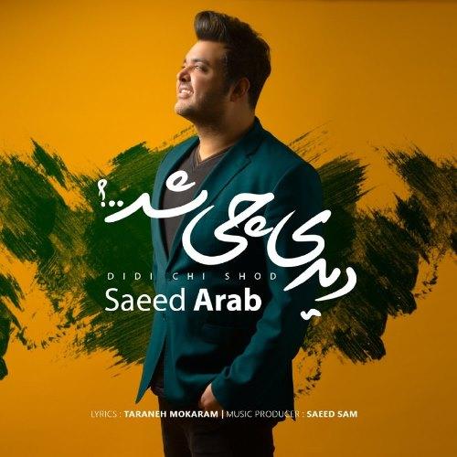 آهنگ جدید سعید عرب بنام دیدی چی شد