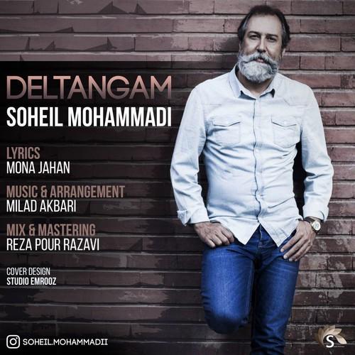 آهنگ جدید سهیل محمدی بنام دلتنگم